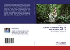 Buchcover von Tantra the Master Key of Ecstasy volume - 4