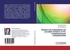 Bookcover of Пористая керамика на основе NaNbO3 и Pb- содержащих соединений