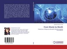 Bookcover of From Waste to Worth