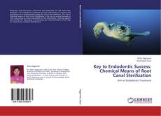 Bookcover of Key to Endodontic Success: Chemical Means of Root Canal Sterilization