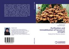 Bookcover of Purification and Immobilization of laccase in xerogels