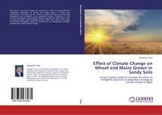 Borítókép a  Effect of Climate Change on Wheat and Maize Grown in Sandy Soils - hoz