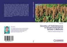 Borítókép a  Genetics of Yield Heterosis in Sorghum(Sorghum bicolor L.Moench) - hoz