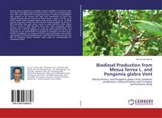 Bookcover of Biodiesel Production from Mesua ferrea L. and Pongamia glabra Vent