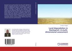 Bookcover of Land degradation in Sterkspruit: A multi-dimensional assessment