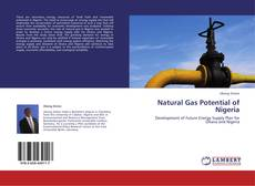 Bookcover of Natural Gas Potential of Nigeria