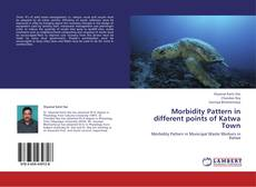 Bookcover of Morbidity Pattern in different points of Katwa Town