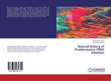 Copertina di Natural History of Picobirnavirus (PBV) Infection