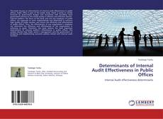 Bookcover of Determinants of Internal Audit Effectiveness in Public Offices