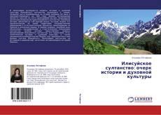Bookcover of Илисуйское султанство: очерк истории и духовной культуры