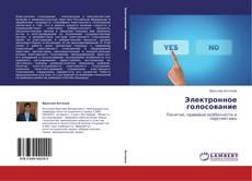 Buchcover von Электронное голосование