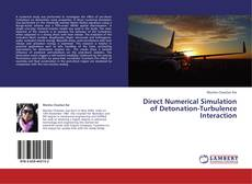 Bookcover of Direct Numerical Simulation of Detonation-Turbulence Interaction