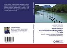Bookcover of Probiotics in Macrobrachium rosenbergii Culture