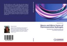 Couverture de Macro and Micro Forms of Thermosensitive Hydrogels