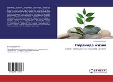Bookcover of Пирамида жизни