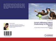 Factors Affecting Labour Productivity in Industrial Sector kitap kapağı