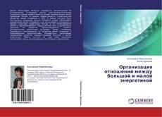 Capa do livro de Организация отношений между большой и малой энергетикой