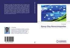Bookcover of Epoxy Clay Nanocomposites