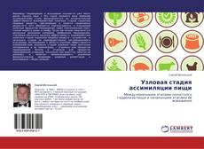 Bookcover of Узловая стадия ассимиляции пищи