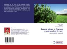 Bookcover of Forage Maize + Cowpea Intercropping System