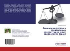 Bookcover of Социальные права в современных конституциях (опыт европейских стран)