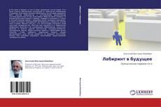 Bookcover of Лабиринт в будущее
