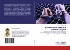 Capa do livro de Уголовный закон и порнография
