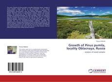 Обложка Growth of Pinus pumila, locality Oblacnaya, Russia