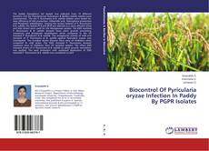 Bookcover of Biocontrol Of Pyricularia oryzae Infection In Paddy By PGPR Isolates