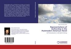 Representations of Authorship in the Postmodern American Novel kitap kapağı