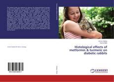 Copertina di Histological effects of metformin & turmeric on diabetic rabbits