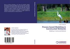 Buchcover von Process based Modeling in Constructed Wetlands