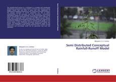 Semi Distributed Conceptual Rainfall-Runoff Model kitap kapağı