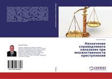 Buchcover von Назначение справедливого наказания при множественности преступлений
