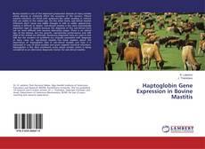 Bookcover of Haptoglobin Gene Expression in Bovine Mastitis