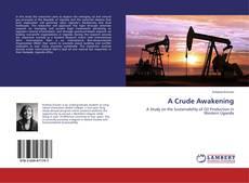 Portada del libro de A Crude Awakening