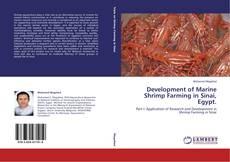 Bookcover of Development of Marine Shrimp Farming in Sinai, Egypt