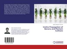 Bookcover of Invitro Propagation of Banana and Plantain Cultivars
