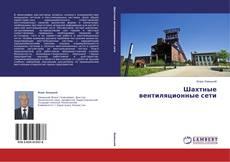Bookcover of Шахтные вентиляционные сети