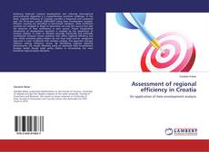 Bookcover of Assessment of regional efficiency in Croatia