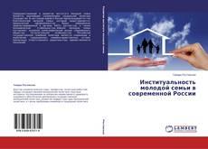Институальность молодой семьи в современной России的封面