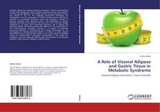 Bookcover of A Role of Visceral Adipose and Gastric Tissue in Metabolic Syndrome