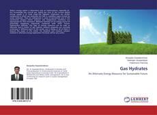 Gas Hydrates kitap kapağı