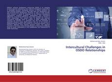 Bookcover of Intercultural Challenges in OSDO Relationships