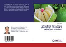 Bookcover of Citrus Rind Borer, Prays endolemma Diakonof, a menace of Pummelo