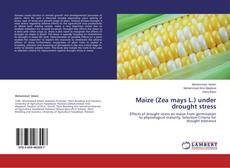 Bookcover of Maize (Zea mays L.) under drought stress