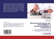 Copertina di Магнитоэлектричество, пьезоэффект и магнитострикция в композитах