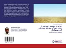 Copertina di Climate Change in Sub-Saharan Africa: a spectrum of disasters?