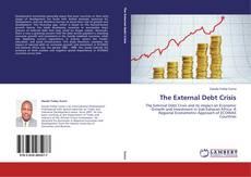 Buchcover von The External Debt Crisis