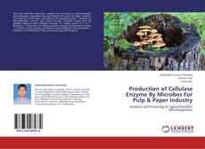 Production of Cellulase Enzyme By Microbes For Pulp & Paper Industry的封面